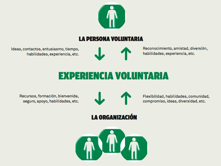 Experiencia-voluntaria