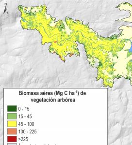 Fragmento mapa